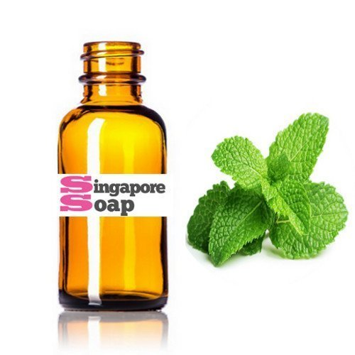 Peppermint Essential Oil (100% Pure, Therapeutic Grade) - Singapore ...