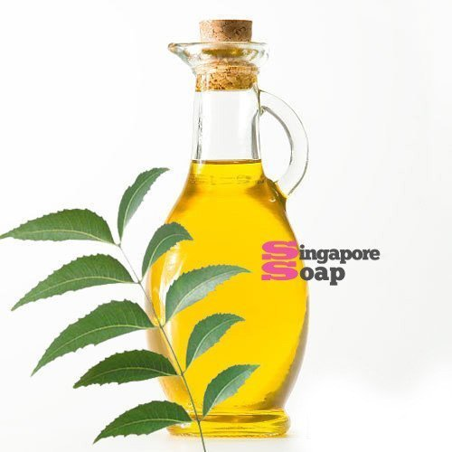 Neem Oil (100% Pure & Cold Pressed)