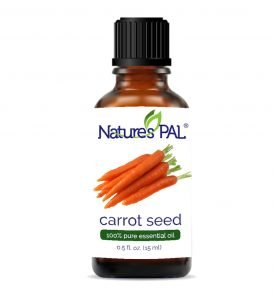 Pure Carrot Seed Essential Oil