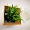 Silicone Round Pillar Soap Mold- 1Kg (4)