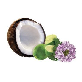 Summer coconut lime verbena Fragrance oil