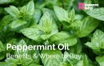 Peppermint Oil Benefits & Where to Buy